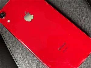 iPhoneXR128G�p卡成色不�e��人自用�C