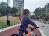 #寻车启示小朋友的平衡车(如图??)在好日子广场遗失小朋友非常非常钟爱它??望拾到或者看