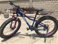 捷安特山地自行車出售…………價格實惠……