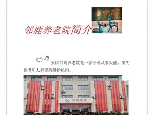 安慶鄰鹿養老院