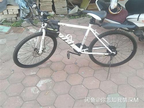 因有电动车,现闲置两辆自行车,白车一百,粉车三百,看好联系