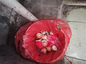 家家悦超市卖坏鸡蛋