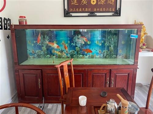 2.4米长鱼缸,9层新,一楼门市,自提