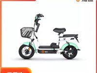 **雅迪乐萌 48V12A铅酸电池 售新安县本地 具体参数可以网上查询
