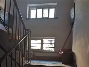 这样的楼道叫我怎样打扫干净