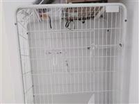 猫笼子 不用了 长 71 宽51 高120 给钱就买