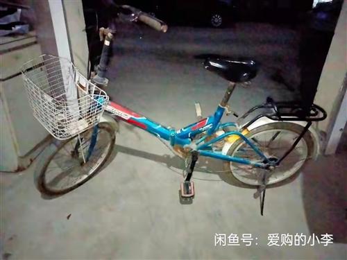 售自家用可折叠追风鸟自行车,同城自取,非诚勿扰