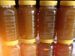 农家土蜂蜜售卖
